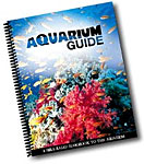 Aquarium Guide - A Fresh Look At God's Underwater Creation