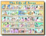 Life Of Jesus - Wall Chart - Lam